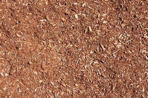 bark vs mulch compost vs mulch mulch grow your way www tinyplantation com