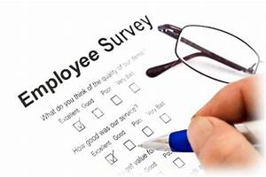 Get to know your employees with a survey - SoGoSurvey Blog