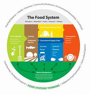 Food System Diagram