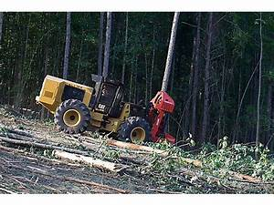 Cat Wheeled Feller Buncher | Forestry Equipment | Pinterest