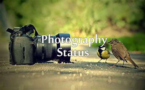 photography status quotes  facebook  whatsapp