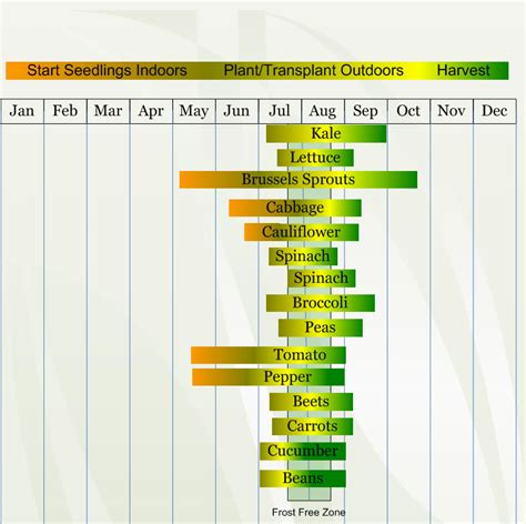 zone 3 vegetable planting calendar describing approximate