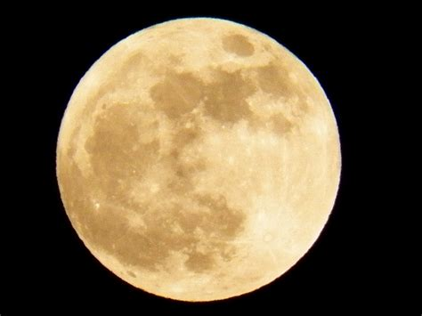 full moon  stock photo public domain pictures