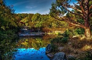 Germany, Parks, Pond, Bavaria, Hdr, Trees, Sendling, Westpark, Munich, Nature, Wallpapers, Hd