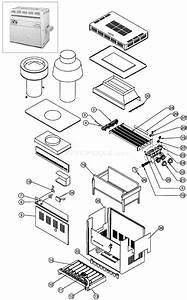 Pentair Minimax Ch Parts