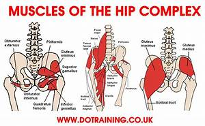 6 Steps To Correcting Hip Flexor Pain
