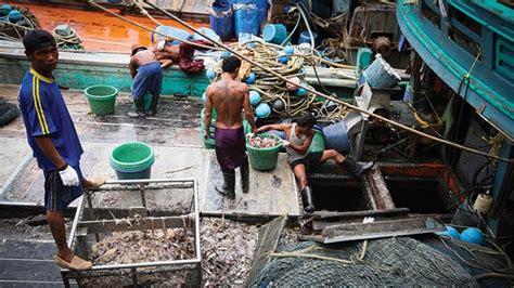 Fishing For Life Boat Auction by Thailand Ignoring Slaves At Sea Says Ejf Report On