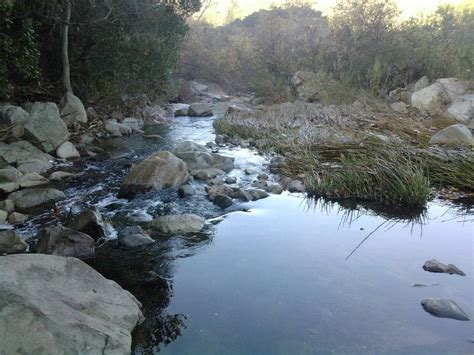 Photos For Elfin Forest Recreational Reserve