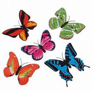 Kunst Vlinders 3D kopen? I MyXLshop (Tip)