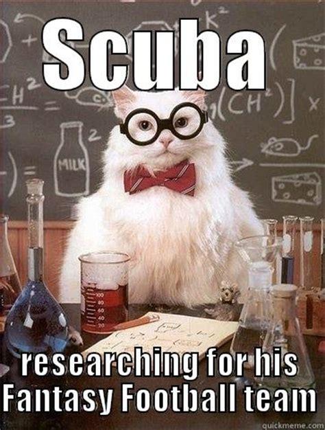 Football Cat Meme - steve fantasy research quickmeme