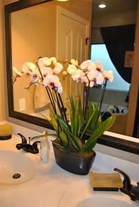 Pflegeleichte Zimmerpflanzen Mit Blüten : gr npflanzen in der kleinen wohnung richtig platzieren problemlose zimmerpflanzen pflanzen ~ Eleganceandgraceweddings.com Haus und Dekorationen