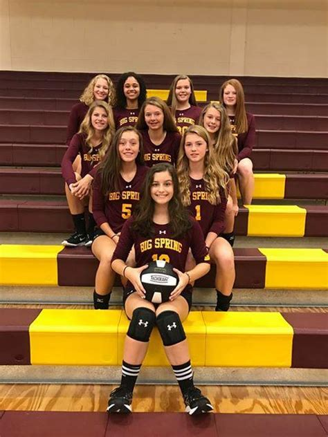volleyball lady bulldogs volleyball