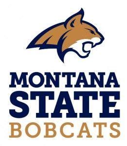 montana state colors montana state bobcats school colors montana montana