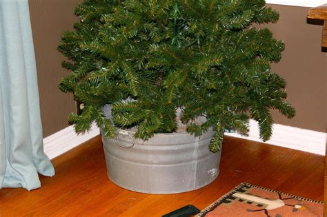 add sugar to christmas tree water how to get a 5 tree and how to take care of it 171 ideas wonderhowto
