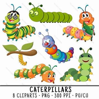 Caterpillar Clipart Bug Clip