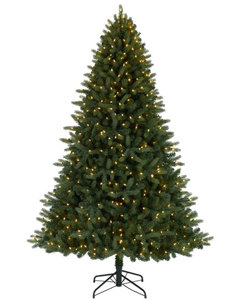 7 jackson fir tree with clear lights tree market