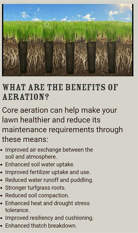 benefits of aeration the 25 best lawn aerators ideas on pinterest water aerator lawn care and thatching lawn