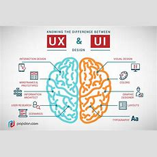 What's The Difference Between Ux And Ui Design? Freecodecamporg