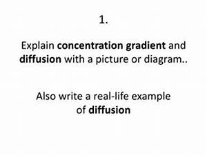 PPT - Brainstorm: How can molecules move against their ...