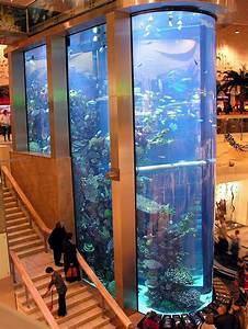 Aquarium Public En Lituanie