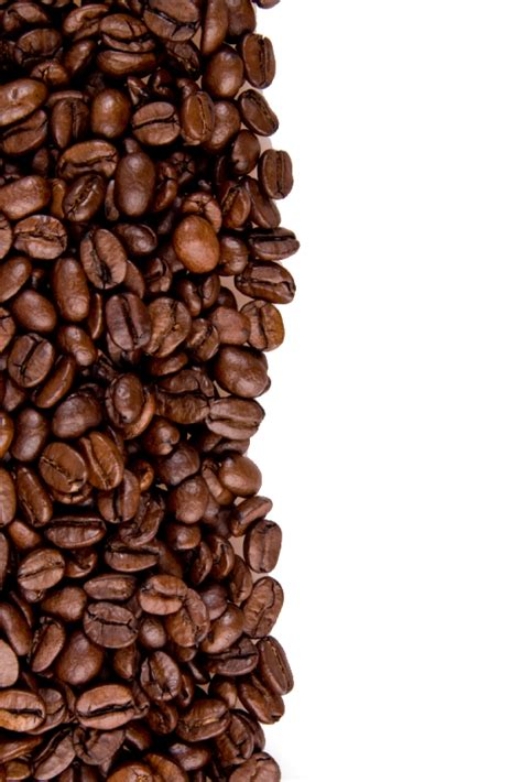 Coffee png transparent free images. Coffee Beans PNG Image - PurePNG | Free transparent CC0 PNG Image Library