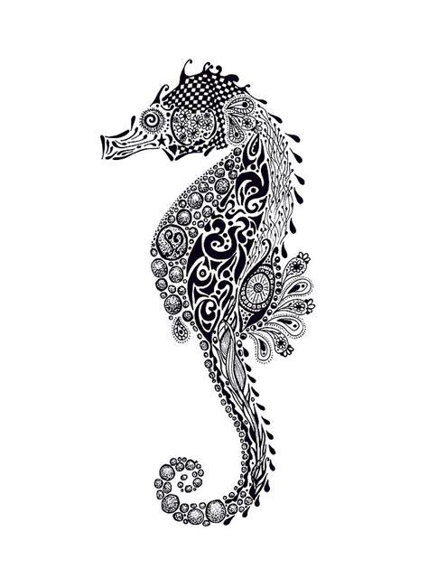 seahorse drawing  jacqueline eden
