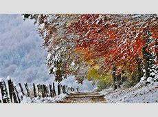 Fall Winter Wallpaper Background WallpaperSafari