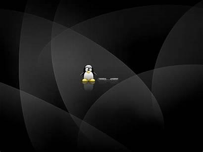 Desktop Linux Wallpapers Ever Widescreen Tux Platt