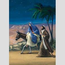 Die Weihnachtsgeschichte  Für Pferde  Blüchers Blog