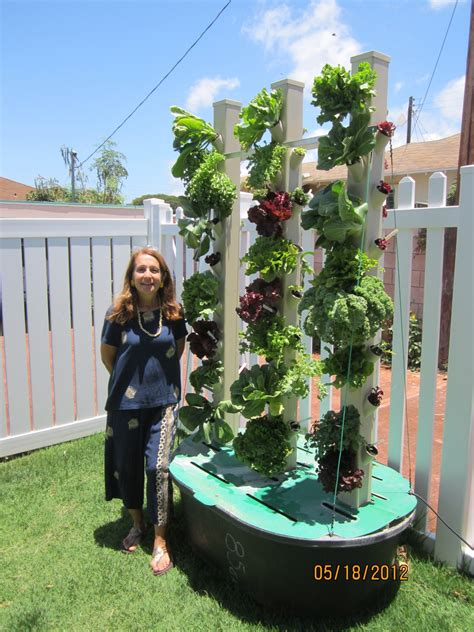 Vertical Garden Aquaponics by Aquaponic Vertical Garden A Scam Proof Guide To