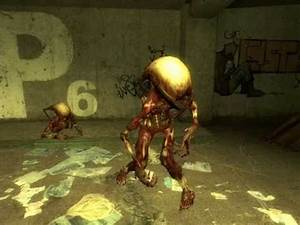 - Half Life 2 - Fast Zombie Sounds - YouTube