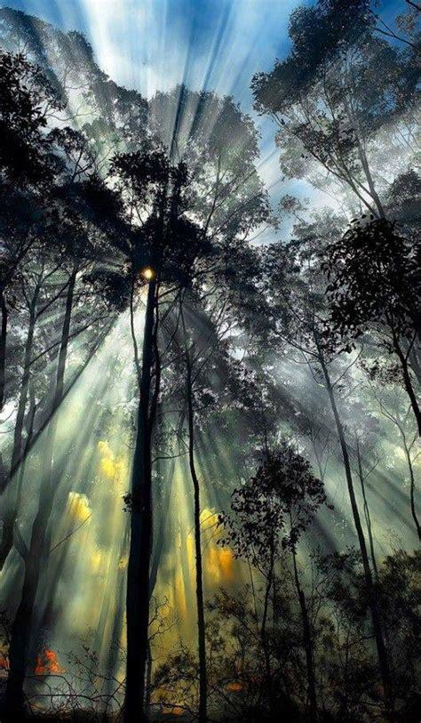 breathtaking sun rays photography xcitefunnet