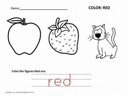 Worksheets Preschool Coloring Colors Pages Kindergarten Colouring