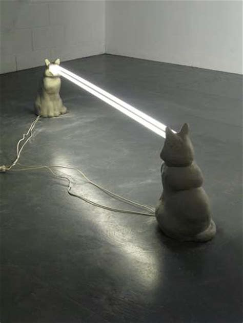 cat laser light fluorescent cat sculptures the feline staring