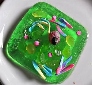 Edible Cell Biology Fun  With Images