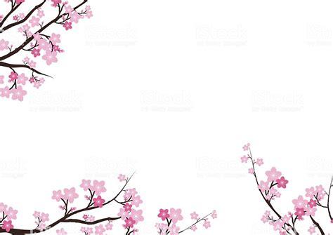 cherry blossom sakura pink flowers backgroundvector card