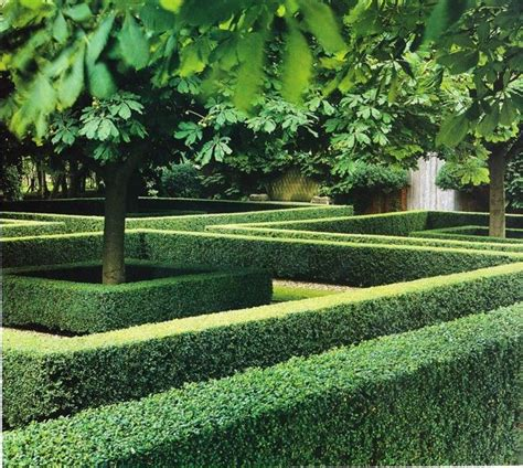 Garten Hecken Ideen by Boxwood Hedge Boxwood Hedge Landscape Designs And