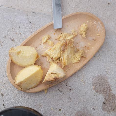 aspen kitchen island a desperate search for casu marzu sardinia 39 s illegal