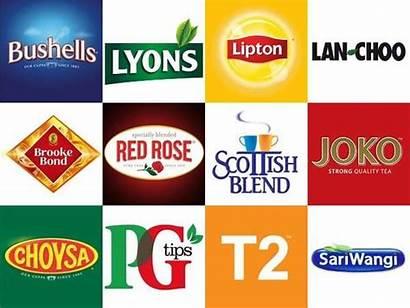 Tea Unilever Brands Brand Logos Different Rose