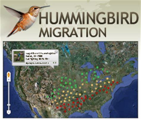 perky pet introduces interactive  hummingbird
