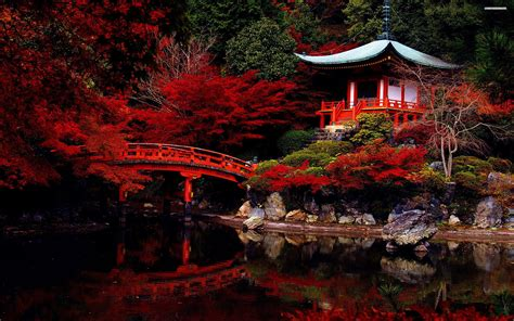 autumn   japanese garden wallpaper landscapes