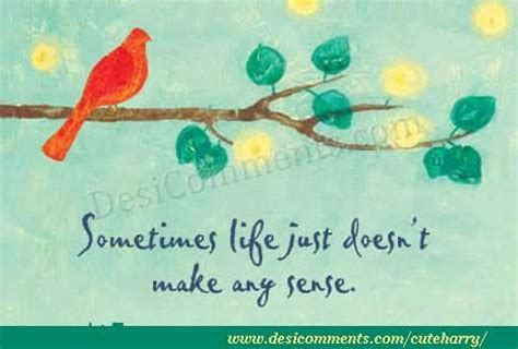 life doesnt   sense desicommentscom