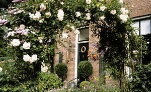 Rosen Selber Ziehen : rosen vermehren garten rasenpflege ~ Lizthompson.info Haus und Dekorationen