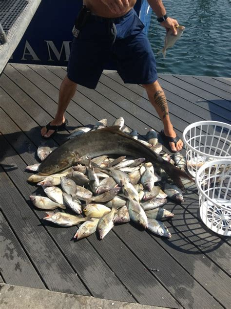 Party Boat Fishing Charters Near Me by Gulfstream Fishing Party Boat Boating Key West Fl