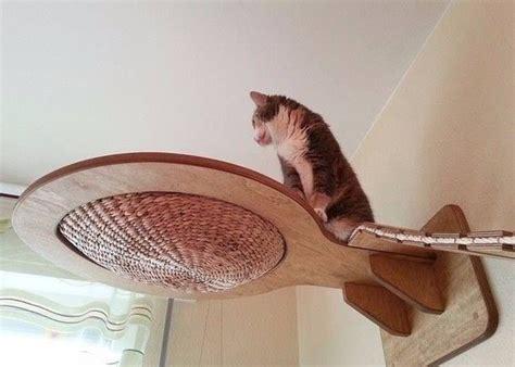 Klettermöglichkeiten Für Katzen