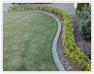 concrete edging tauranga garden curbing bay  plenty