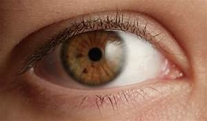 Most Rare Eye Color | is my eye color i ask you friends ...
