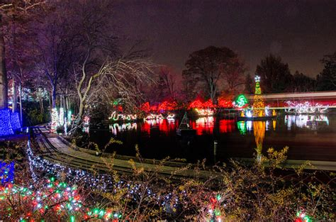 cincinnati zoo festival of lights flickr photo