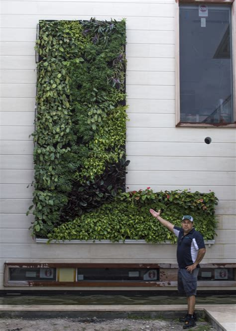 Vertical Garden Miami by Miami Vertical Gargen Green Walls Gallery Project