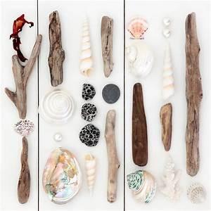 Bois Flotté Décoration : cr er sa d coration en bois flott ~ Melissatoandfro.com Idées de Décoration